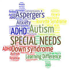 Additional/Special Educational Needs