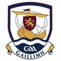 U16 Galway Camogie Team