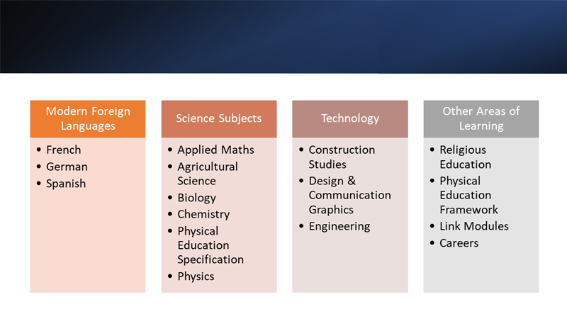 Subjects options 2.png